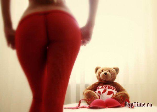 Teddy bear и его шлюшки